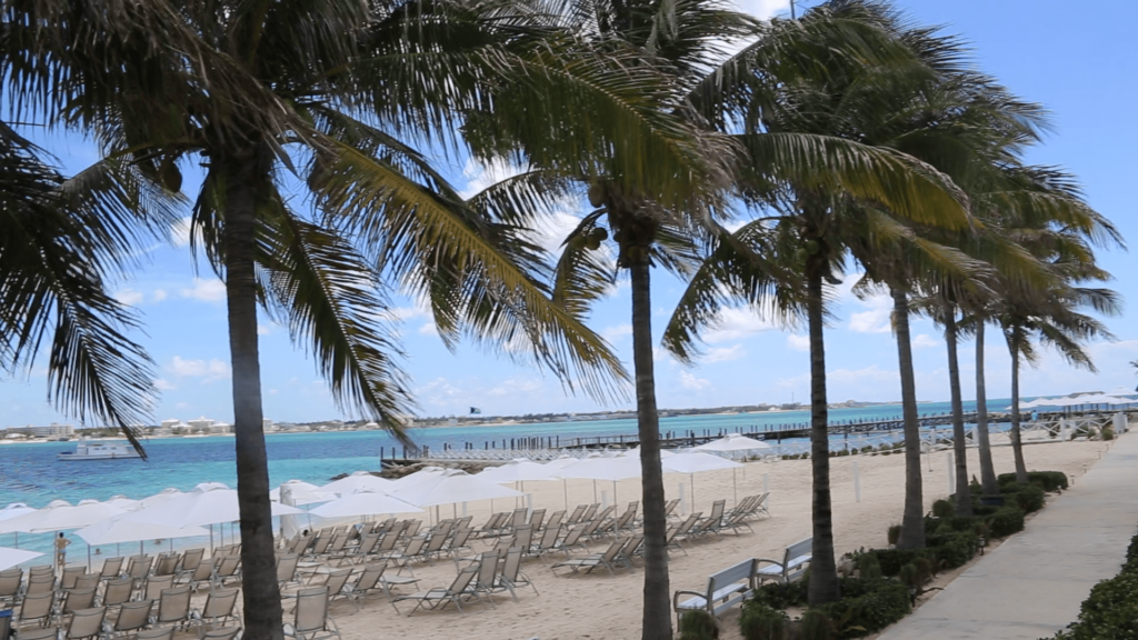 Best Things to Do in Nassau Bahamas on a cruise