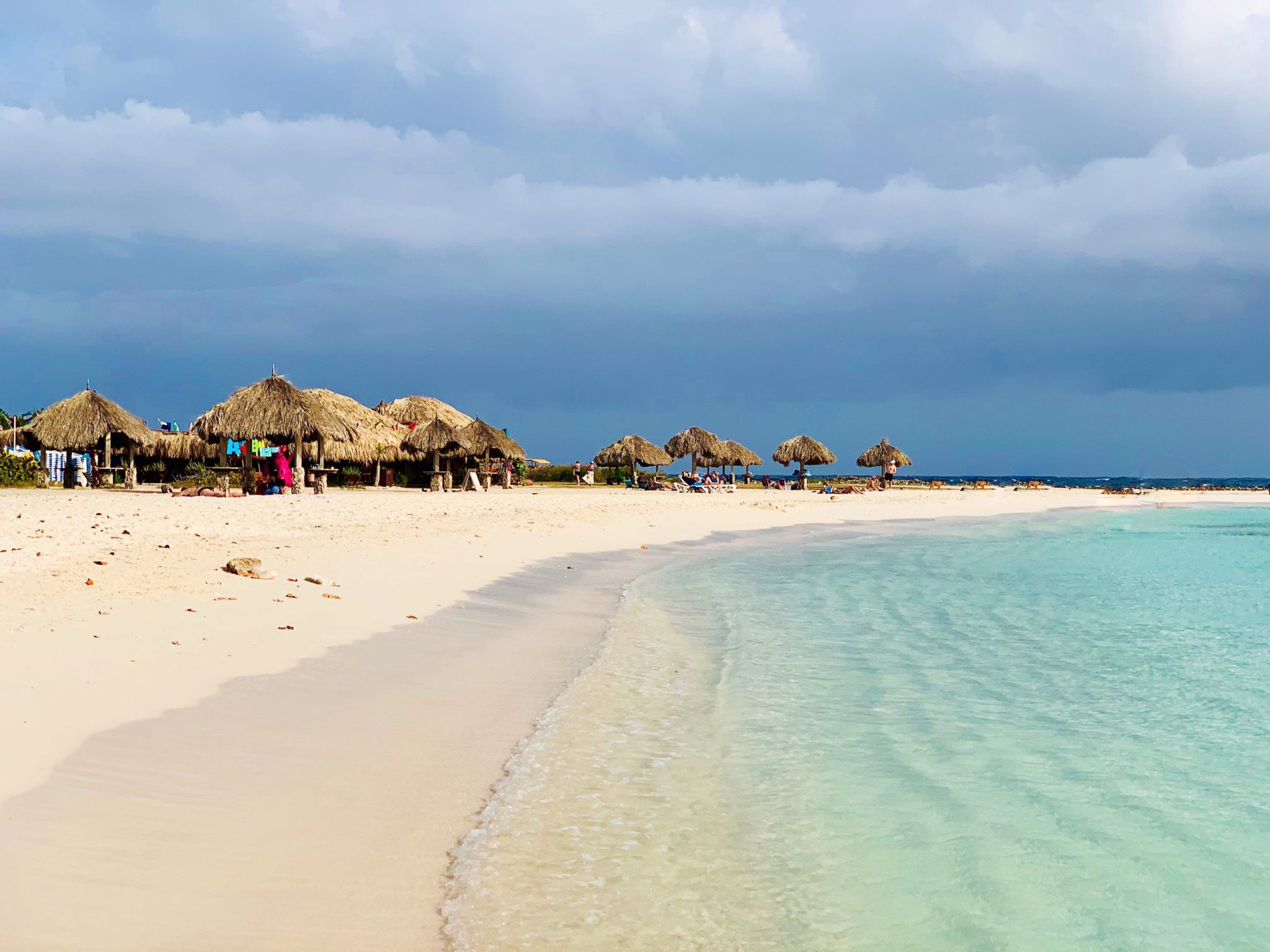Best Things to do in Aruba on a Cruise for 2020