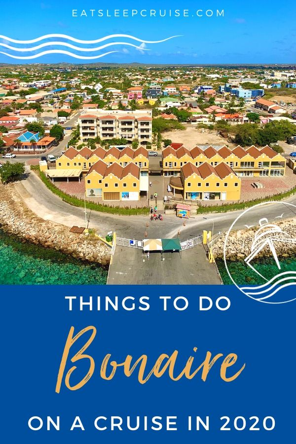 Best Things to Do in Bonaire on a Cruise in 2020