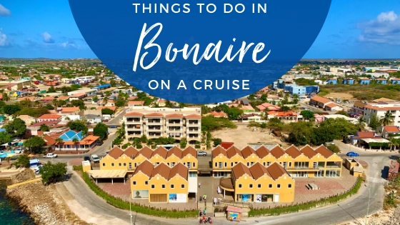 Best Things to Do in Bonaire on a Cruise Updated for 2020