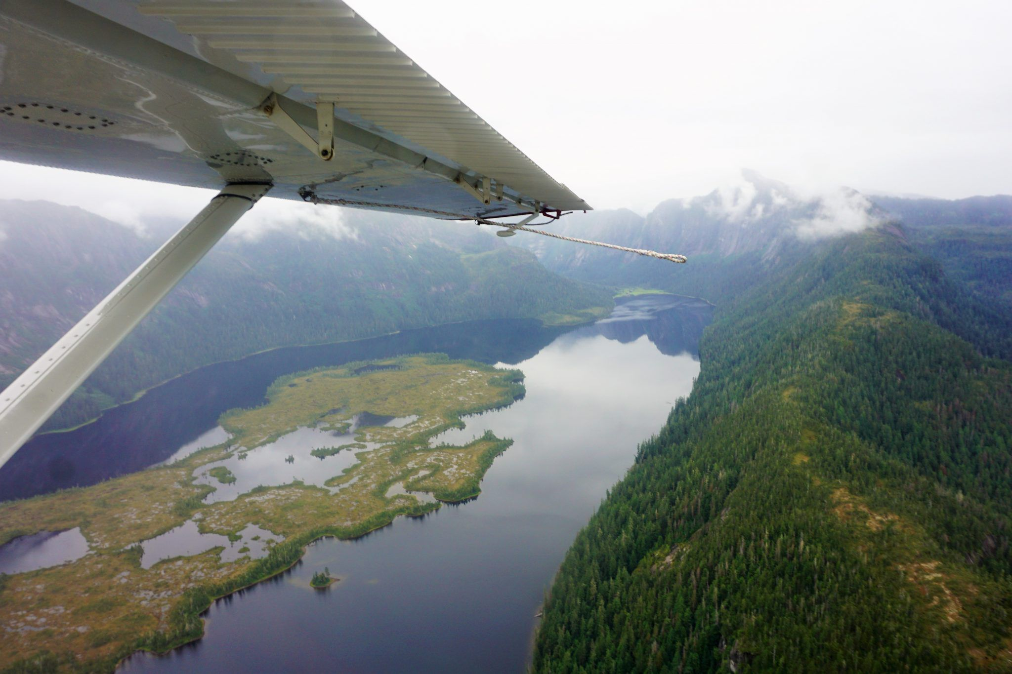 Top Things to Do in Ketchikan, Alaska on a Cruise | Eat Sleep Cruise