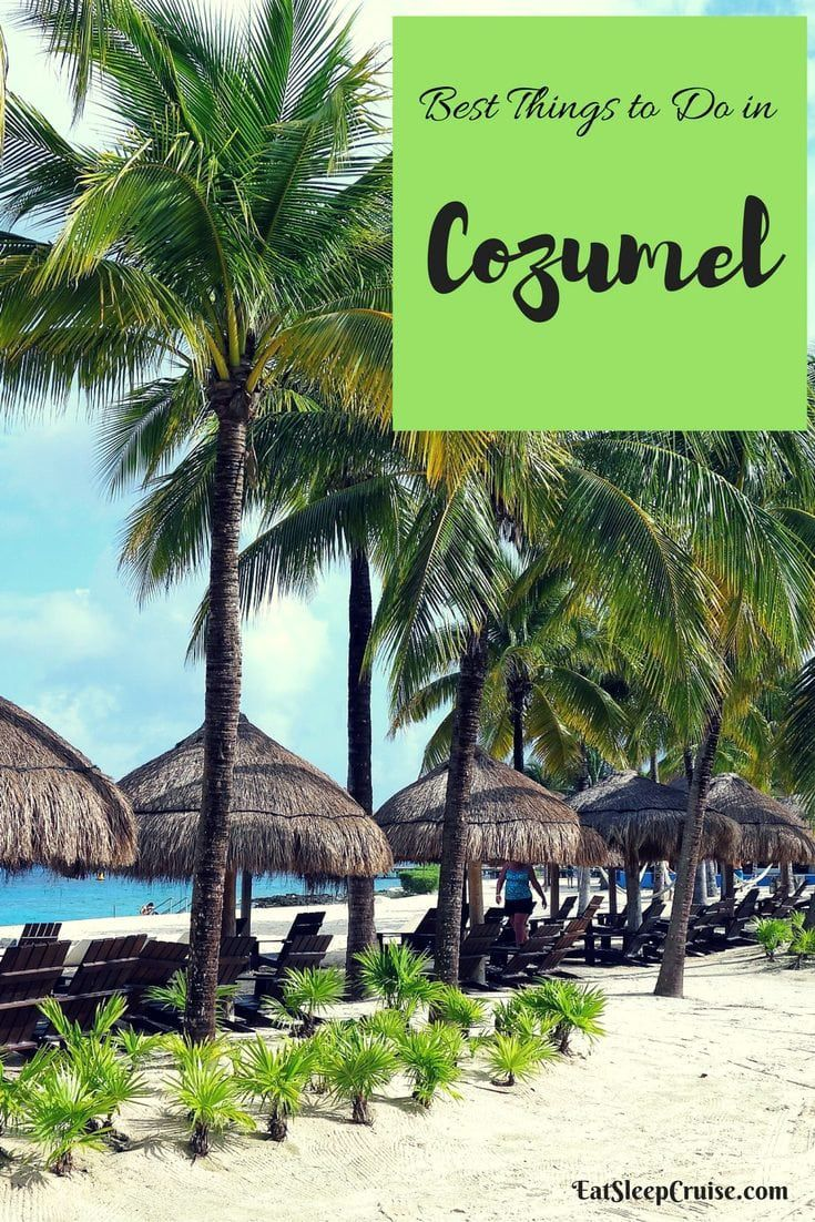 Best Things to Do in Cozumel on a Cruise