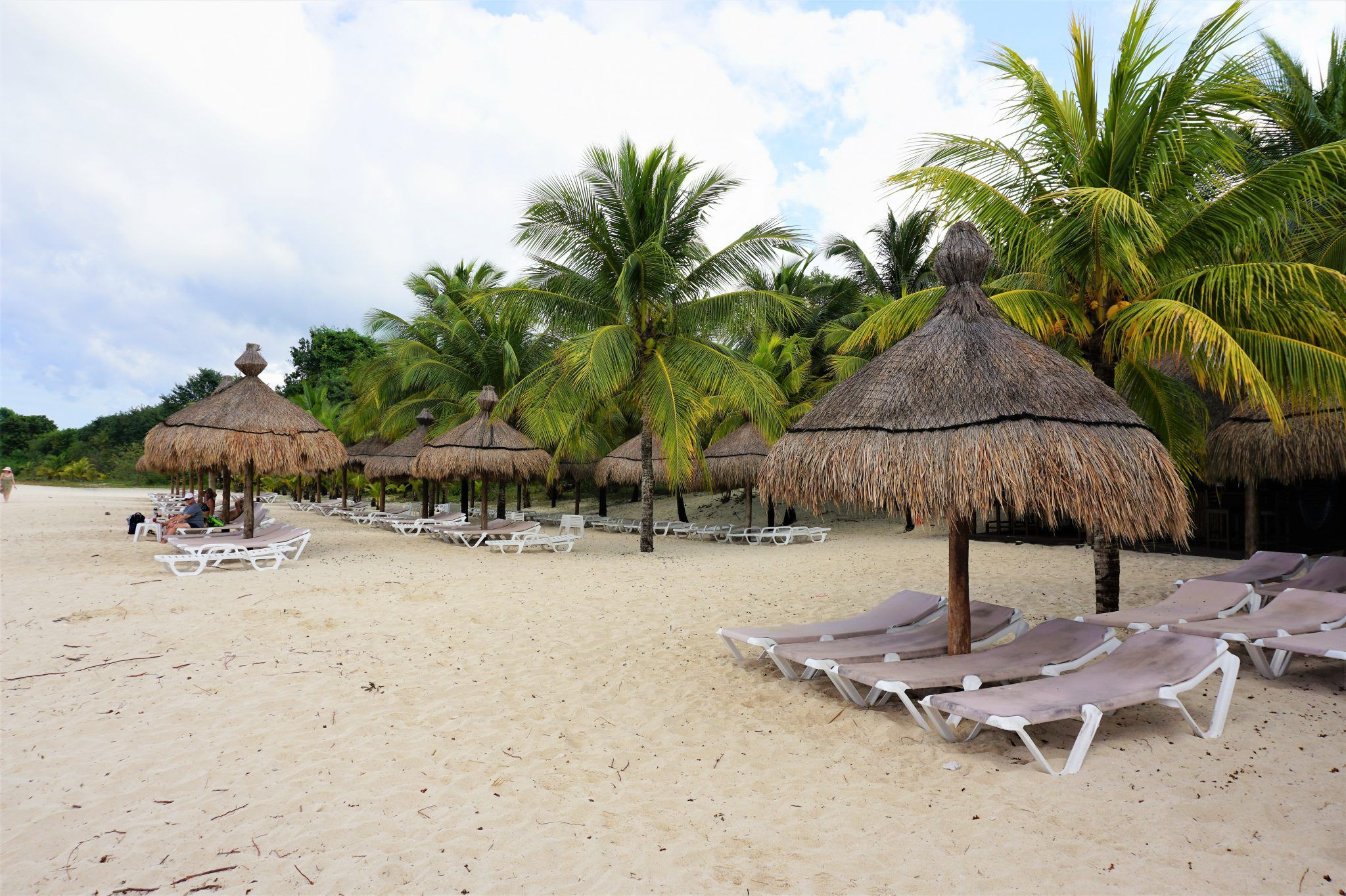Best Things to Do in Cozumel