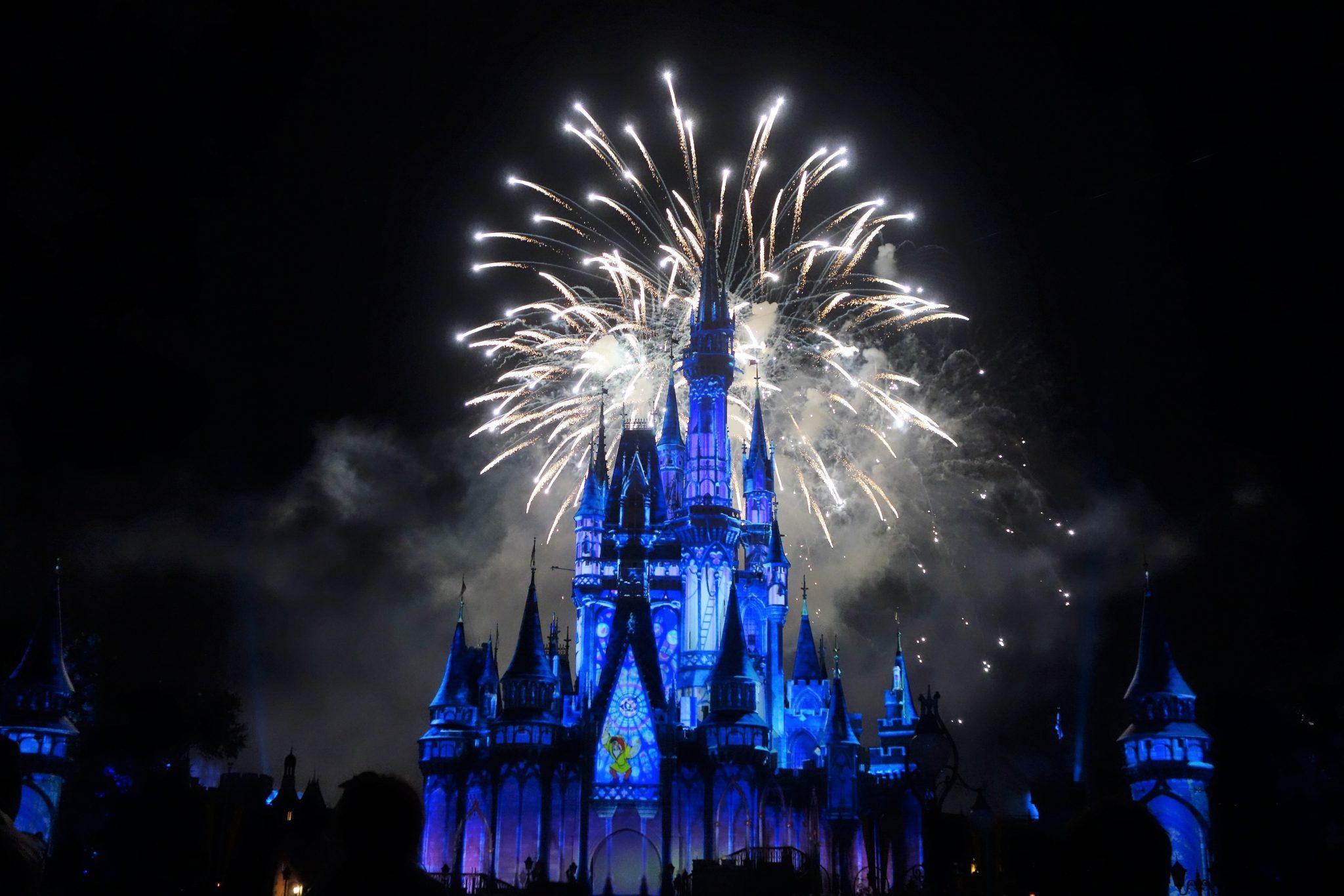 Disney World as a Shore Excursion