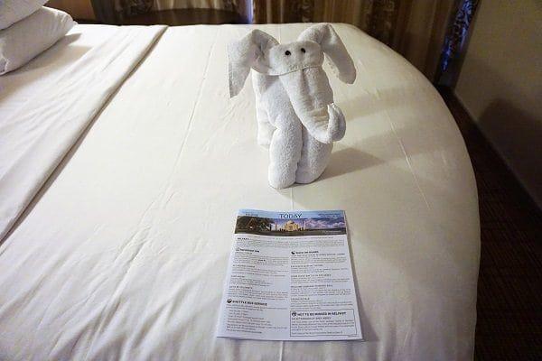 Towel Animal Celebrity Eclipse
