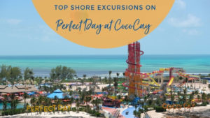 Top Perfect Day at CocoCay Shore Excursions
