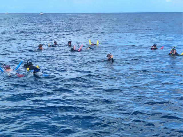 Woordwind Boniare Snorkeling Excursion Review
