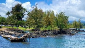 Best of the Big Island Tour Review