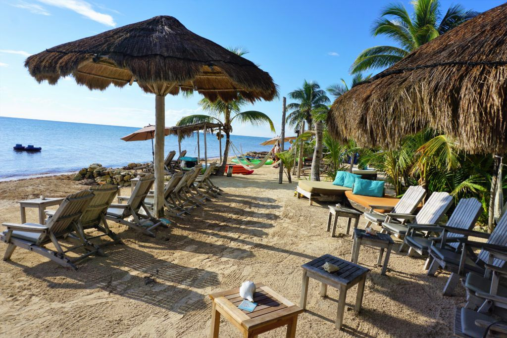 booking shore excursions