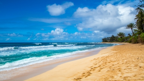 Best Tropical Cruise Vacations
